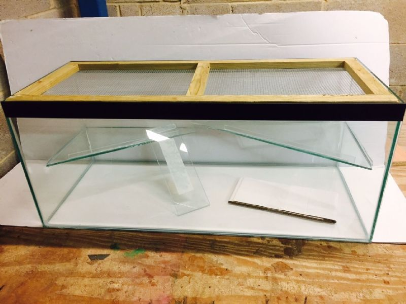 Hamster , Gerbil, Mice Tank with lid and shelf and ladder - large 36x15x15""
